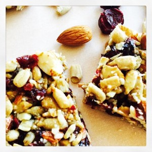 Cranberry Almond Protein Bar