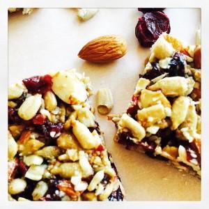 Cranberry Almond Protein Bar