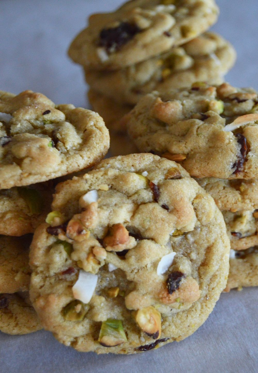 Tropical Christmas Cookies 3 1000_opt-2