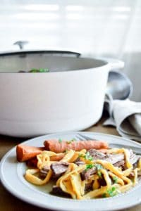 beef and noodles with carrots on a plate in front of a stock pot