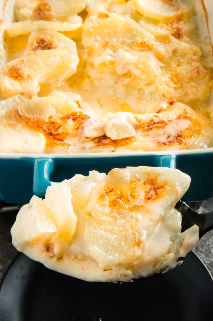 Thick Creamy Sauce with scalloped potatoes on a serving spoon