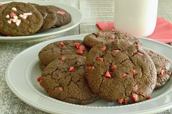 Chewy Chocolate Cookies on a plate with cherry Chips