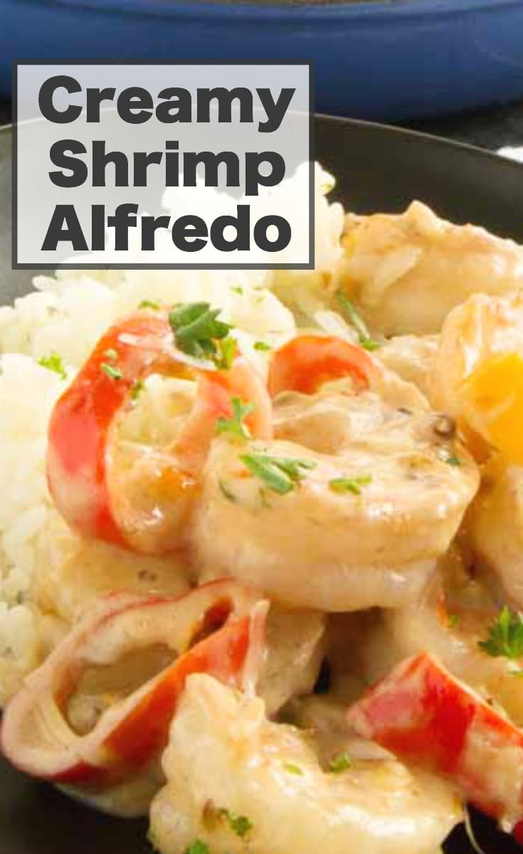 This Shrimp Alfredo Recipe is full of creamy, cheesy and velvety sauce all around tender succulent shrimp! Easy comfort food that comes together in one pan in 30 minute for easy weeknight meal entertaining. #weeknightdinner #quickdinner #shrimp ##alfredo