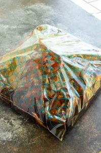 zip lock bag sealed with marinade and meat